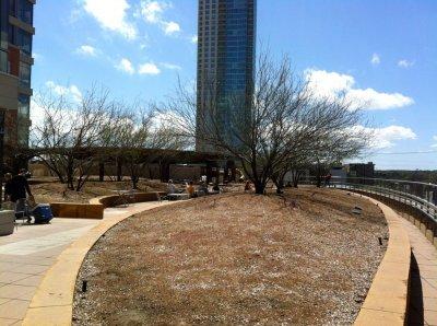 A Week In Austin